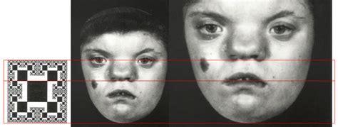 same facial features png 936x354
